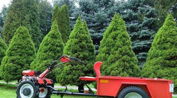 Traktorek ogrodowy z glebogryzarką